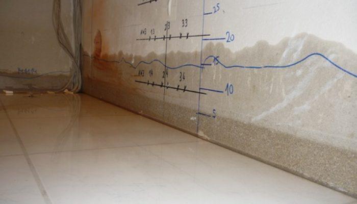Aufstieg der Feuchte in angrenzender Wand während Erzeugung des Wasserschadens.